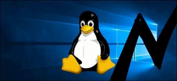 O que está empurrando cada vez mais usuários do Windows para o Linux?