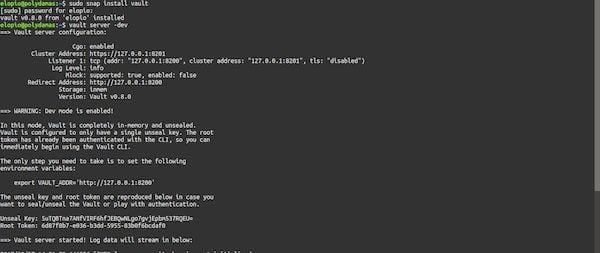 Como instalar o utilitário de segurança Vault no Linux via Snap