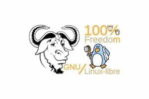 kernel GNU Linux-Libre 5.8 lançado - Confira as novidades e baixe