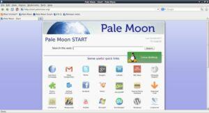 Pale Moon 28.12.0 lançado com poucas alterações e várias correções