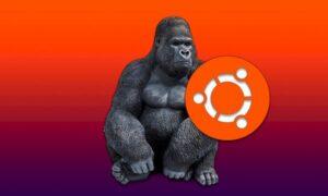 Ubuntu 20.10 entrou em congelamento de recursos! Entenda!