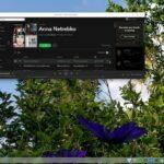 ArchEX Linux 2020 lançado com Deepin 15.11, LXQt 0.15.0 e Kernel 5.8.8