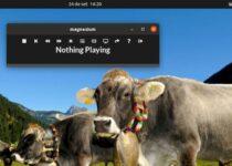 Como instalar o reprodutor de músicas Magnesium no Linux via Snap