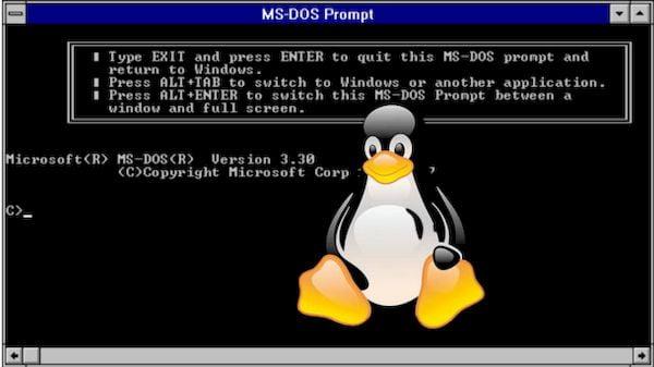 Desenvolvedor criou um DOS Subsystem For Linux (DSL)
