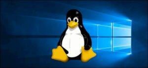 Está chegando uma correção do Windows 10 para usuários do Linux