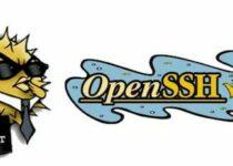 OpenSSH 8.4 lançado como uma implementação 100% completa do protocolo SSH 2.0