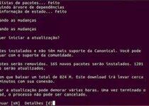 Como atualizar para o Ubuntu 20.10 via terminal (server e desktop)
