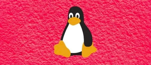 Linux 5.10 rc1 LTS lançado com o bug de 2038 corrigido para o ano de 2486