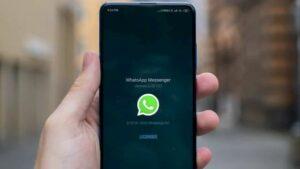 WhatsApp adicionou a opção Sempre Mudo para um grupo ou contato