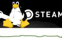 Marketshare do Steam no Linux permaneceu estável em novembro