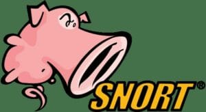 Snort 3 lançado com novos recursos importantes e melhorias