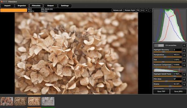 Como instalar o editor de imagens RAW no Linux via AppImage