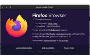 Firefox 87 entrou em beta com a tecla Backspace desativada e mais
