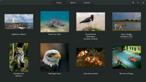 Como instalar o gerenciador de imagens Photos no Linux via Flatpak