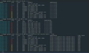 Como instalar o utilitário de pesquisa de DNS Doggo no Linux