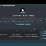 Como instalar o TikTok-Downloader no Linux via Snap