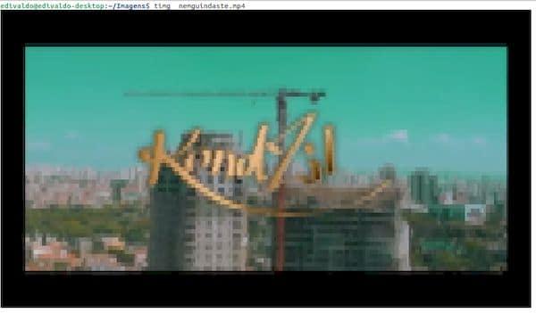 Como instalar o visualizador de mídia no terminal Timg no Linux via Snap