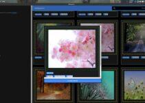 Como instalar o app de papéis de parede Wallpapers no Linux via Snap