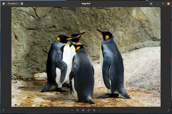 Como instalar o visualizador de imagens Image Roll no Linux via Flatpak
