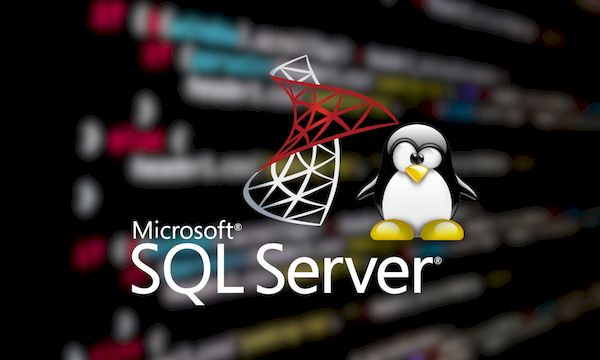 MS suspende SQL Server em contêineres Windows e recomenda o Linux
